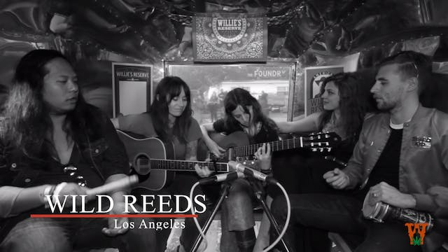 In Luck Trailer Talks - The Wild Reeds
