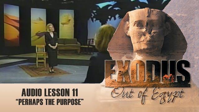 Perhaps the Purpose - Audio Lesson 11...