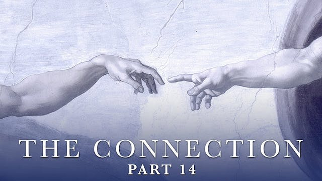 The Connection - Video 14