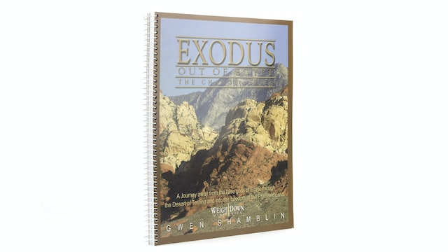 Exodus Out of Egypt: The Change Series Workbook