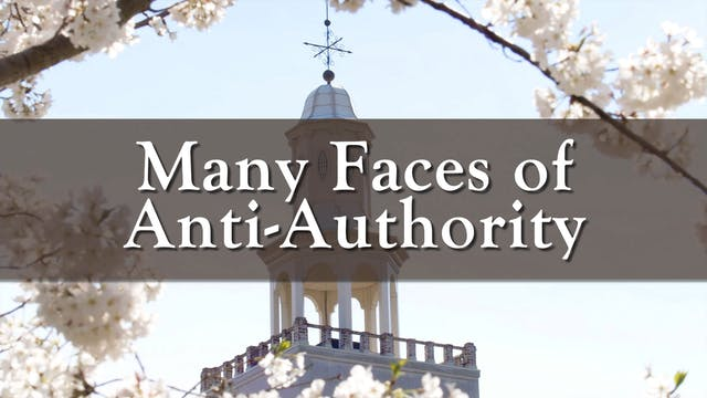 Many Faces of Anti-Authority
