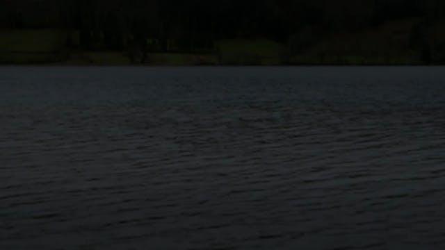 WOFD-Trailer
