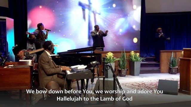Hallelujah to the Lamb of God