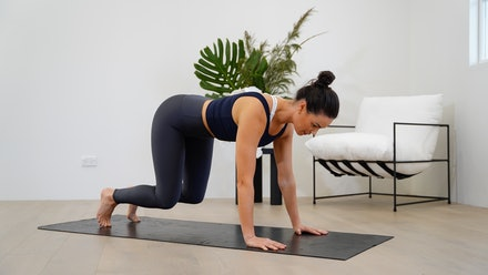 Wild Pilates Online Video