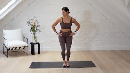 Wild Pilates Online Studio Video
