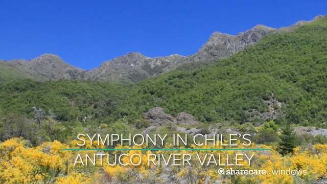 30 Minutes of Symphony in Chile's Antuco River Valley