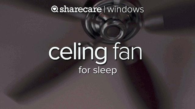 Ceiling Fan for sleep, slow speed 3 hours