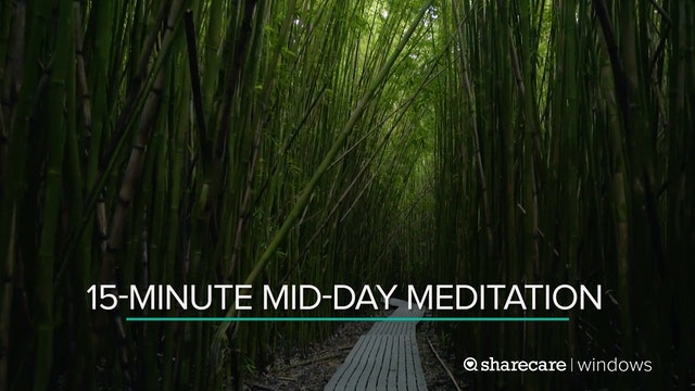 15-Minute Mid-Day Meditation