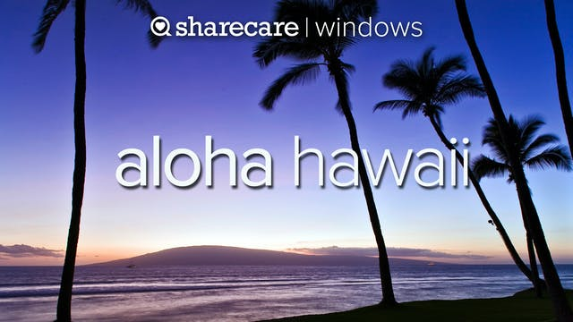 Aloha Hawaii natural relaxation