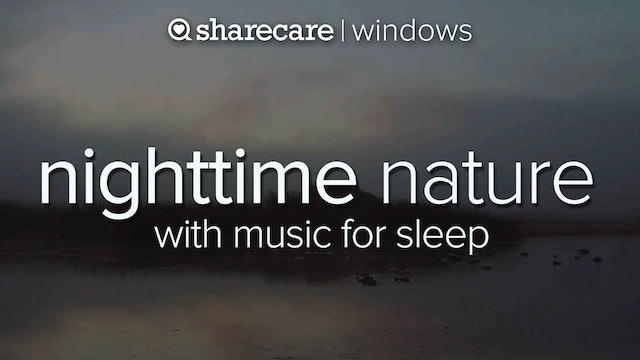 Nighttime Nature with Music