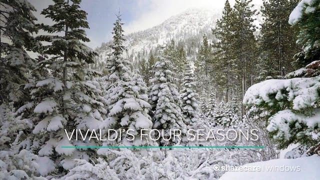 Vivaldi's Four Seasons With Breathtak...