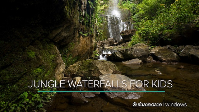 One Hour of Jungle Waterfalls for Kids