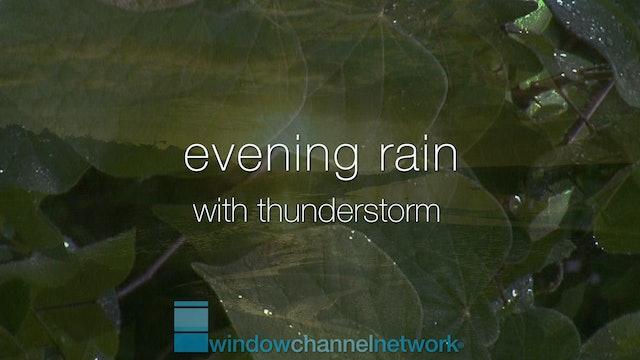 Evening Rain 1Hour