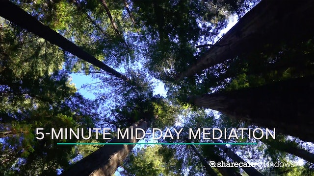 5-Minute Mid-Day Meditation
