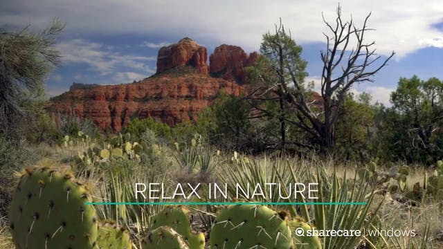 30 Minutes to Relax in Nature
