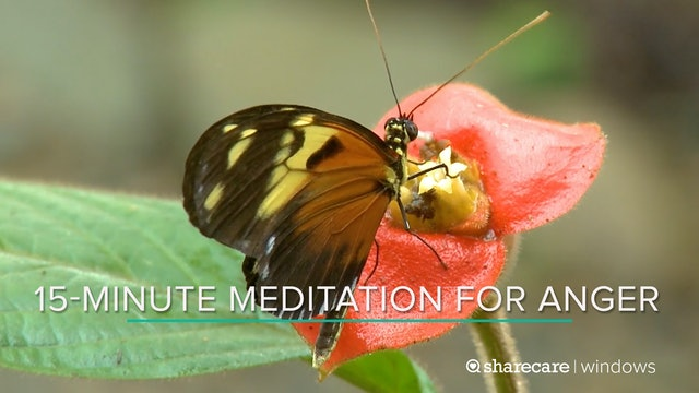 15-Minute Meditation for Anger