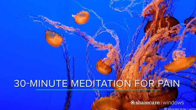 30-Minute Meditation for Pain