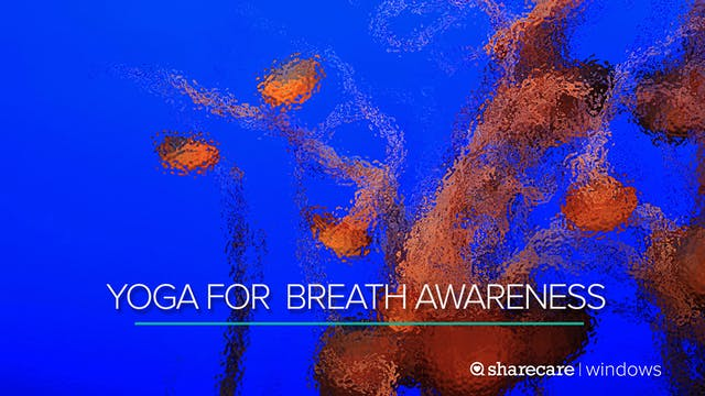 5 Minutes of Yoga for Breath Awareness