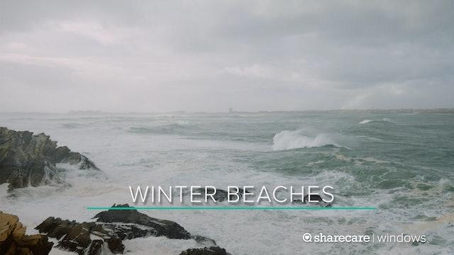 Winter Beaches
