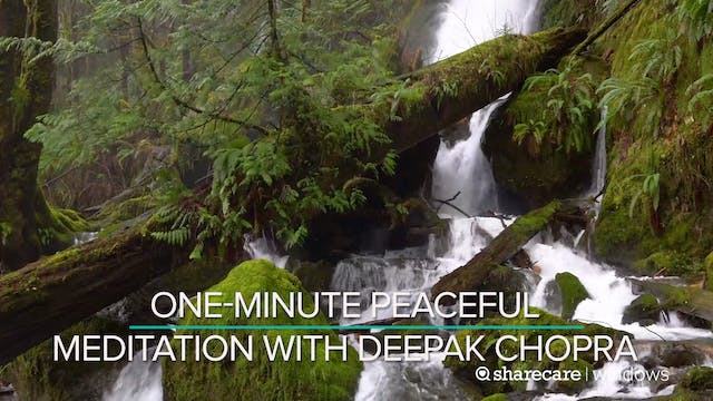 One-Minute Peaceful Meditation with D...