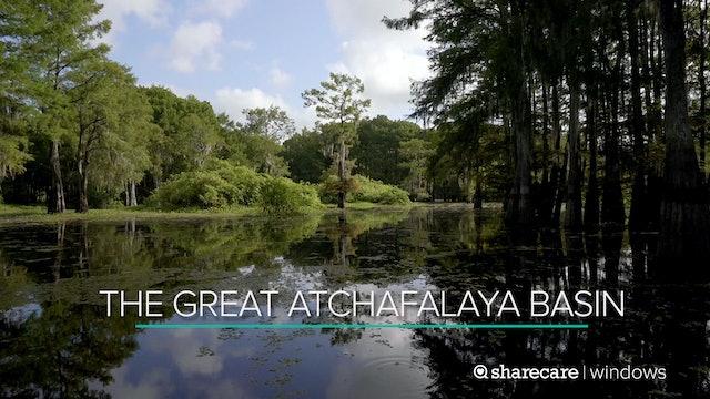 The Great Atchafalaya Basin