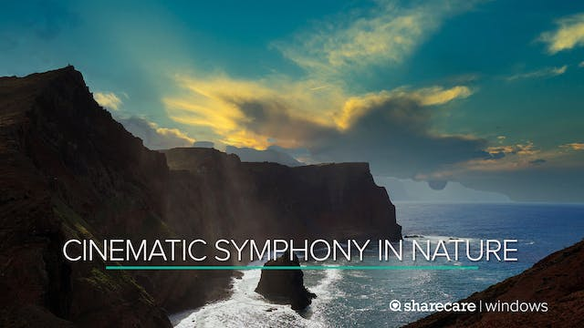 Cinematic Symphony in Nature