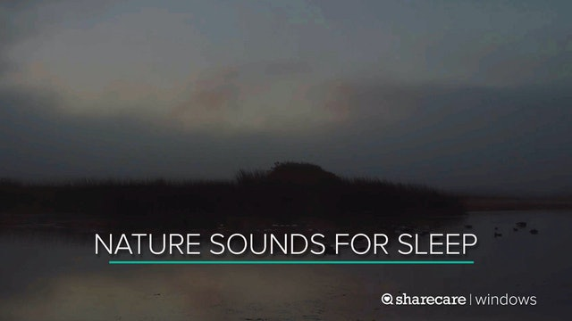 9 Hours of Nighttime Nature Sounds for Sleep (Ultra Low Light)