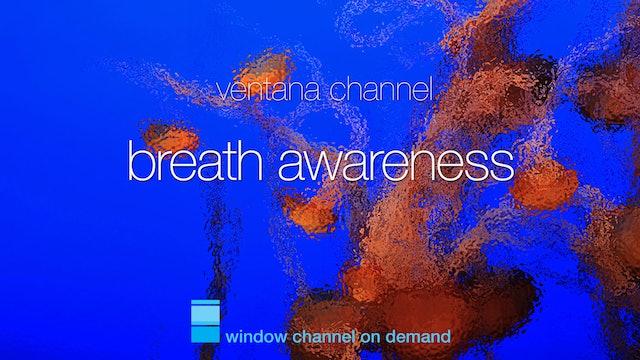 Breath Awareness