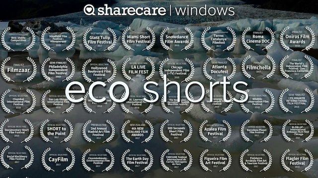 Award-Winning Eco Shorts - streaming