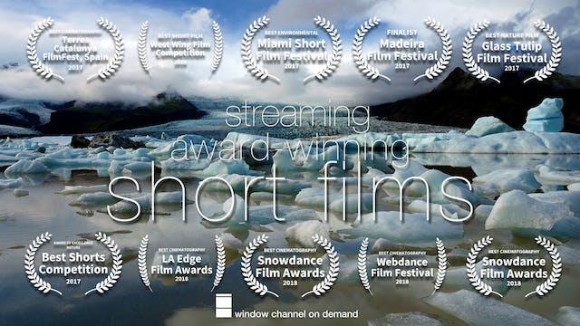 Award-Winning Eco Shorts - streaming