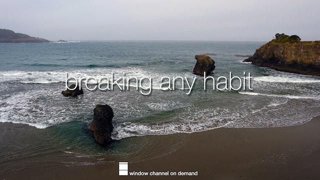 Breaking any Habit