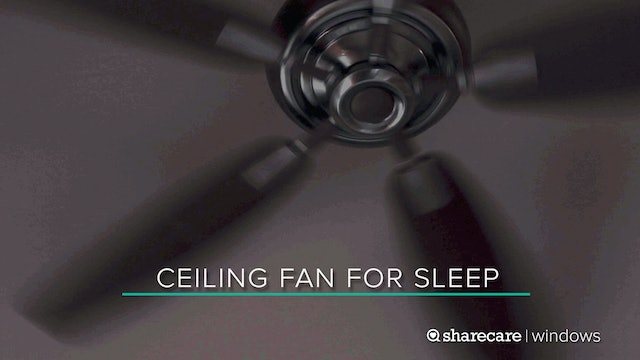 9 Hours of Ceiling Fan for Sleep (Ultra Low Light)