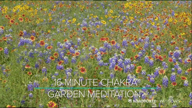 16 Minute Chakra Garden Meditation
