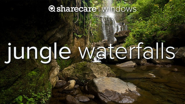 Jungle Waterfalls