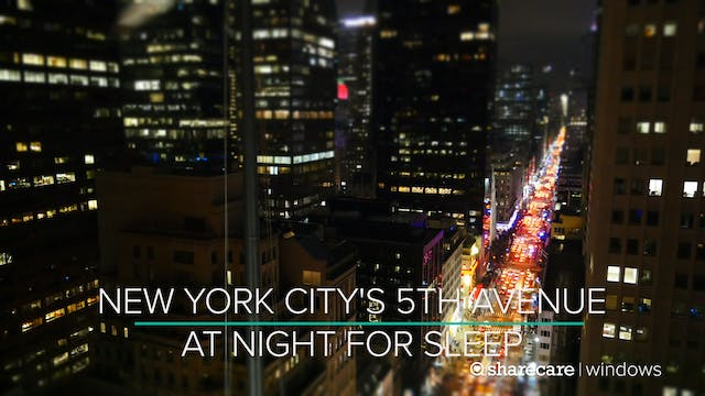 9 Hours of New York City's 5th Avenue...