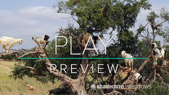 """Play Preview: """"Soothing Sights and Sounds for Kids"""""""
