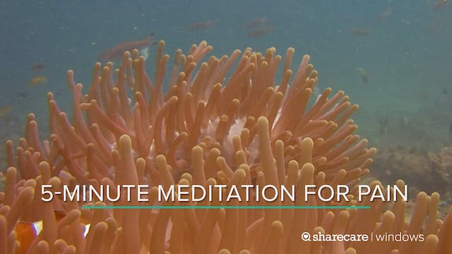 5-Minute Meditation for Pain