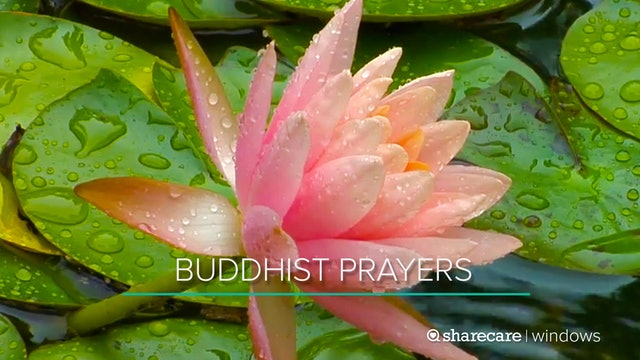 30 Minutes of Buddhist Prayers