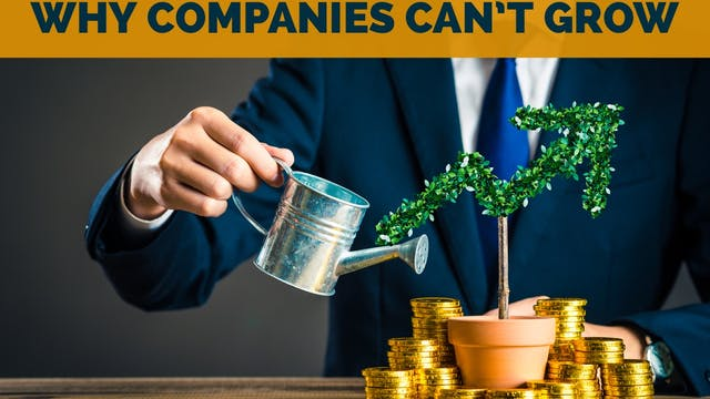 Why Companies Can't Grow