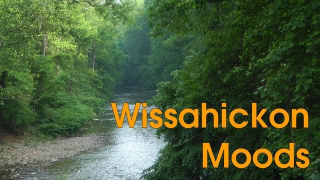 Wissahickon Moods