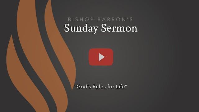 God's Rules for Life — Bishop Barron'...