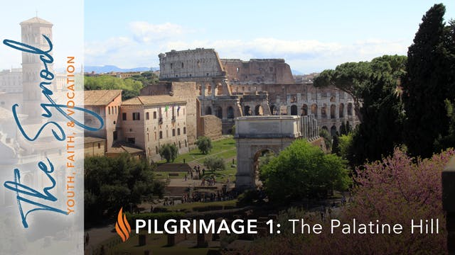 Word on Fire Pilgrimage 1: The Palati...