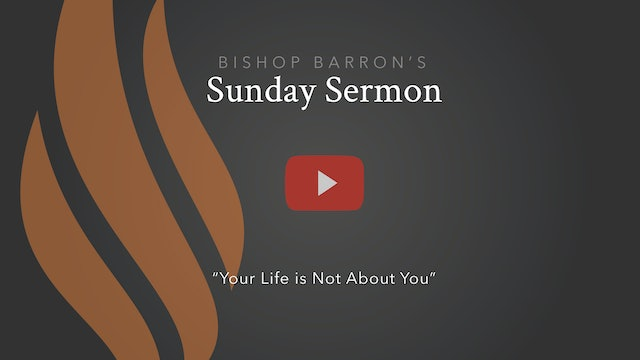 Your Life is Not About You — Bishop Barron's Sunday Sermon