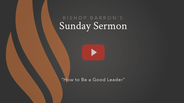 How to Be a Good Leader — Bishop Barron's Sunday Sermon