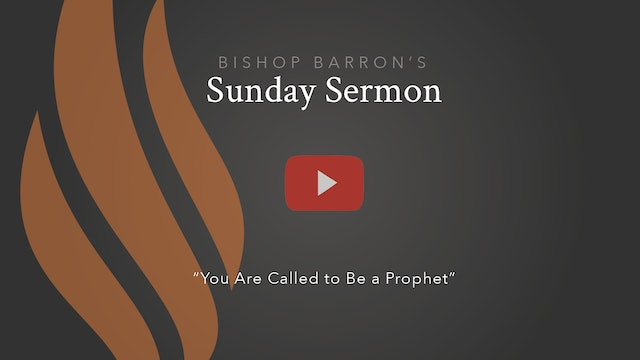 You Are Called to Be a Prophet — Bishop Barron's Sunday Sermon