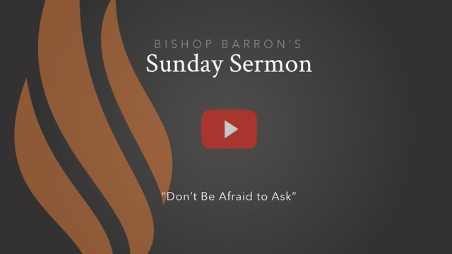 Don't Be Afraid to Ask — Bishop Barron's Sunday Sermon
