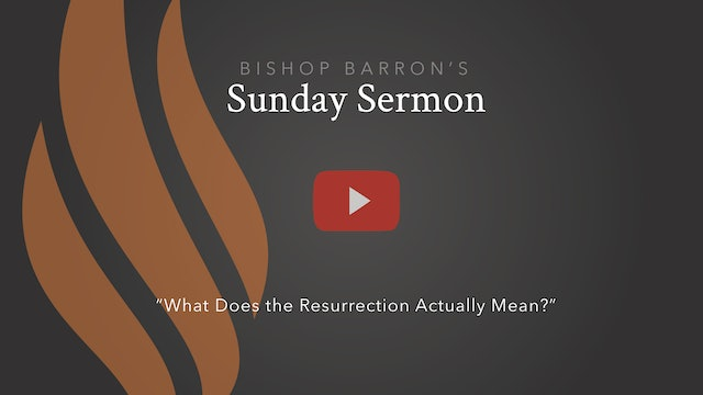What Does the Resurrection Actually Mean? — Bishop Barron's Sunday Sermon