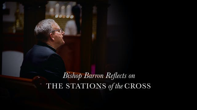 Bishop Barron Reflects on The Station...