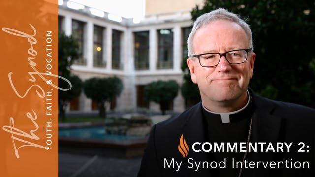 Synod 2018: My Synod Intervention
