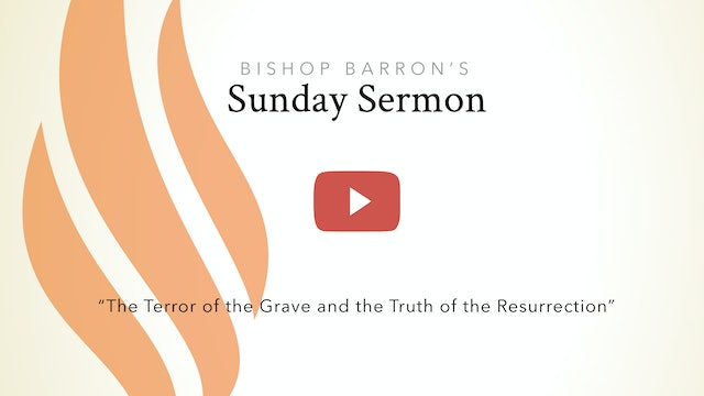 Terror of the Grave, Truth of the Resurrection — Bishop Barron's Sunday Sermon